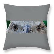Eagle's Eyes Throw Pillow