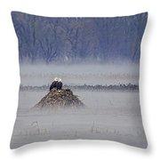 Eagles On Foggy Morning Throw Pillow