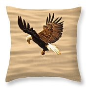 Eagles Pause Throw Pillow by Skye Ryan-Evans