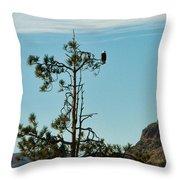 Eagle's View Throw Pillow