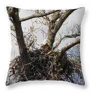 Eagles Watchful Eye 2 Throw Pillow