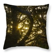 Ear Drum Throw Pillow