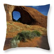 Ear Of The Wind Arch Throw Pillow