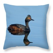 Eared Grebe Podiceps Nigricollis Throw Pillow