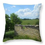 Earlier Times Throw Pillow