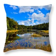 Early Autumn At Fly Pond - Old Forge New York Throw Pillow