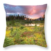 Early Autumn Meadow Sunset At Mt Baker Throw Pillow