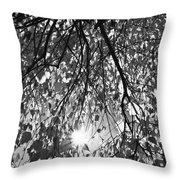 Early Autumn Monochrome Throw Pillow