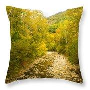Early Autumn On Seneca Creek Wv Throw Pillow