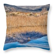 Early Bird Gets The Worm Throw Pillow by Cat Connor