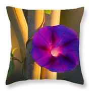Early Bloomer Throw Pillow