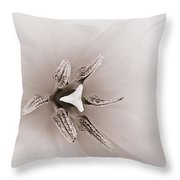 Early Blooming Tulip Throw Pillow