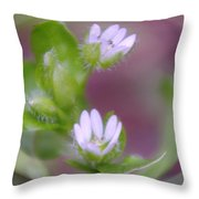 Early Blossoms  Throw Pillow
