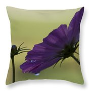 Early Dawns Light On Fall Flowers 01 Throw Pillow