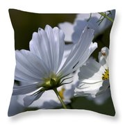Early Dawns Light On Fall Flowers 02 Throw Pillow
