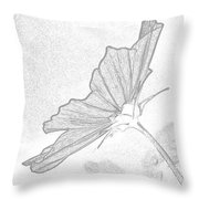 Early Dawns Light On Fall Flowers Bw Throw Pillow