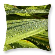 Early Dew Throw Pillow