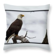 Early Evening Hunting Throw Pillow