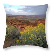 Early Evening Landscape At Arches National Park Throw Pillow