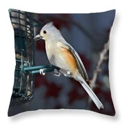 Early Evening Snack Throw Pillow