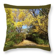 Early Fall 1 Throw Pillow