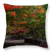 Early Fall At Talimena Park Throw Pillow