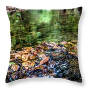 Early Fall Number Two Throw Pillow