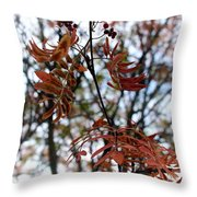 Early Fall Of Rowan Throw Pillow