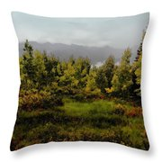 Early Fall On Kebler Pass Throw Pillow