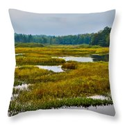 Early Fall On The Moose River - Old Forge New York Throw Pillow by David Patterson