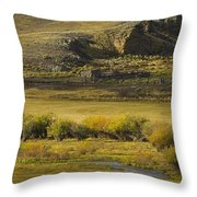 Early Fall Sunrise Throw Pillow