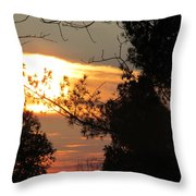 Early Feb 9 2013 Sunset Throw Pillow