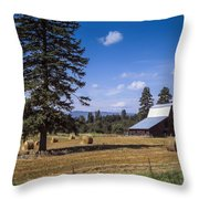 Early Harvest Throw Pillow