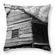 Early Homestead -3 Throw Pillow by Janice Sakry