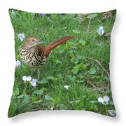 Early Migrant Throw Pillow