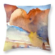 Early Morning 55 Throw Pillow