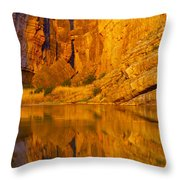Early Morning Canyon Reflection Throw Pillow