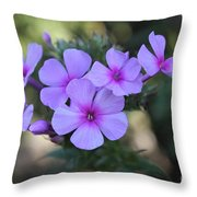 Early Morning Floral Beauty  Throw Pillow