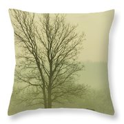 Early Morning Fog 016 Throw Pillow