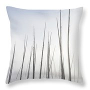 Early Morning Fog Drifts Through Dead Throw Pillow