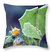 Early Morning Frost Throw Pillow