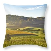 Early Morning Landscape In Fog Throw Pillow