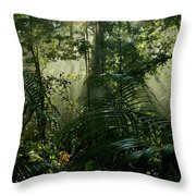 Early Morning Light In The Rain Forest Throw Pillow