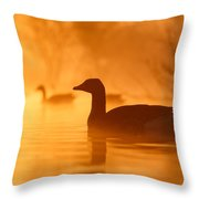 Early Morning Mood Throw Pillow