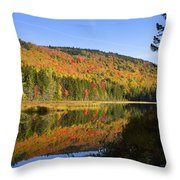Early Morning On Greenough Pond  Throw Pillow