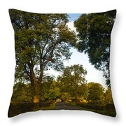Early Morning On The Way To Trossachs. Scotland Throw Pillow
