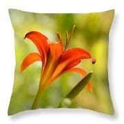 Early Morning Portrait Throw Pillow