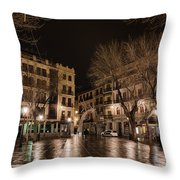Early Morning Quiet Throw Pillow