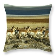 Early Morning Run-signed Throw Pillow
