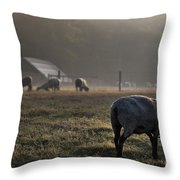 Early Morning Sheep Throw Pillow